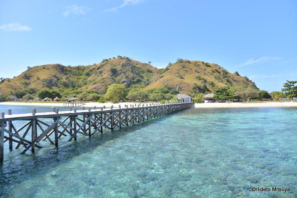 【インドネシア】Kanawa beach bungalows(2014年5月宿泊)