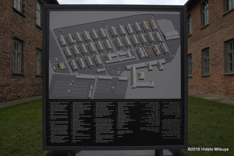 アウシュヴィッツ強制収容所配置図