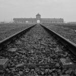 【ポーランド】アウシュヴィッツの壮絶さを体感するならば冬の早朝訪れるべし:アウシュヴィッツ訪問記その3