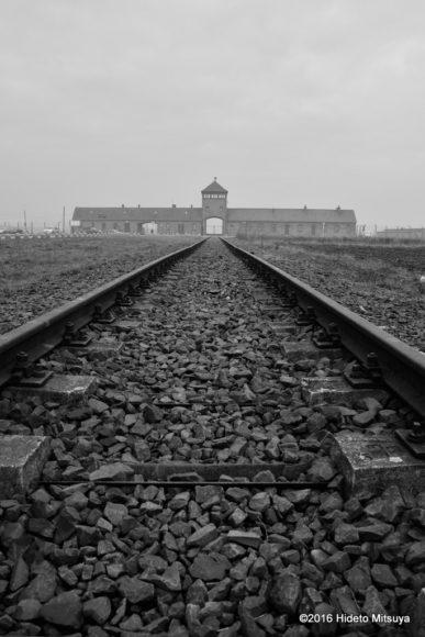 ビルケナウ第二強制収容所へ向かう線路