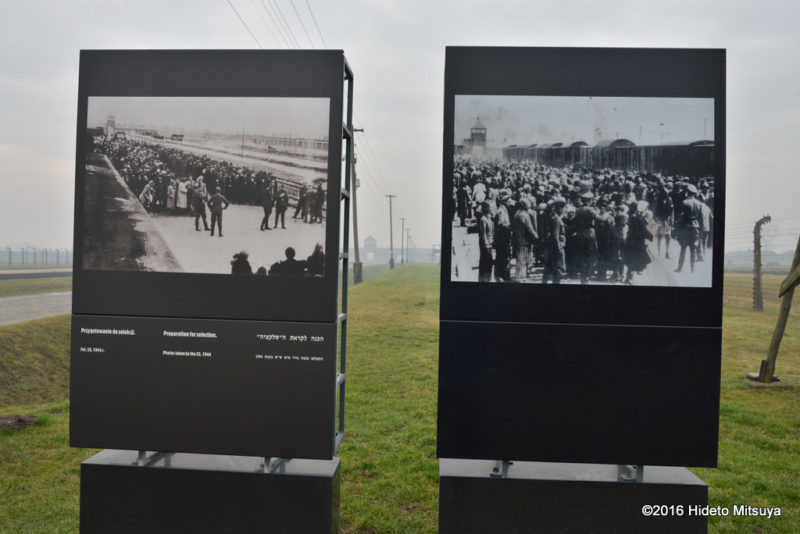 ビルケナウ第二強制収容所内にある当時の写真の展示