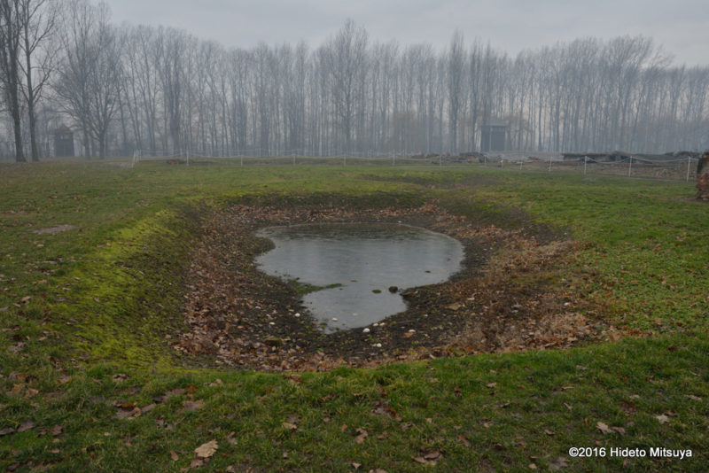 ビルケナウ第二強制収容所焼却処分された被収容者の遺灰がばらまかれた場所