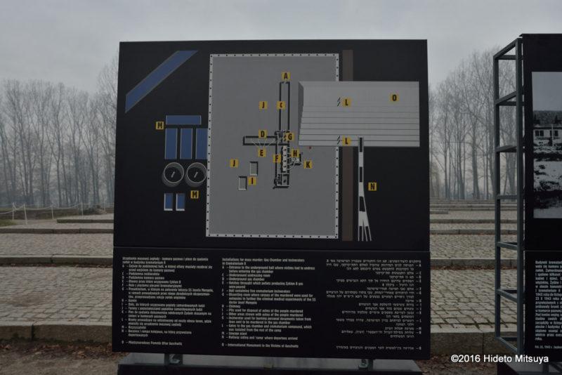ビルケナウ第二強制収容所ガス室(クレマトリウム)の見取り図