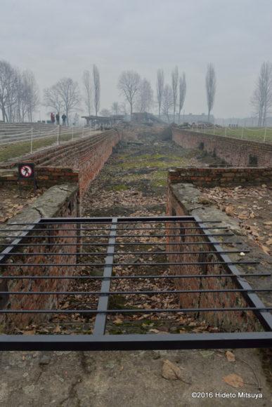 ビルケナウ第二強制収容所破壊されたガス室(クレマトリウム)の入り口部分
