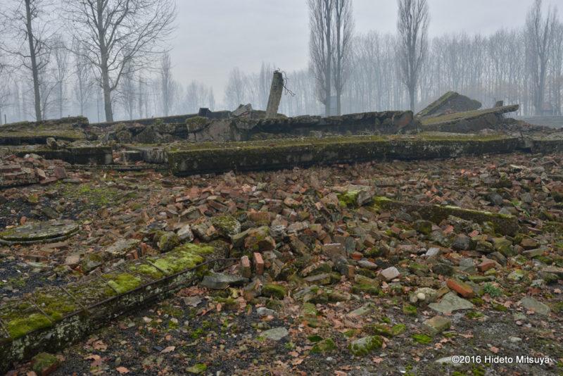 ビルケナウ第二強制収容所クレマトリウム(ガス室)の廃墟