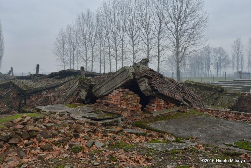 ビルケナウ第二強制収容所クレマトリウム(ガス室)の廃墟3