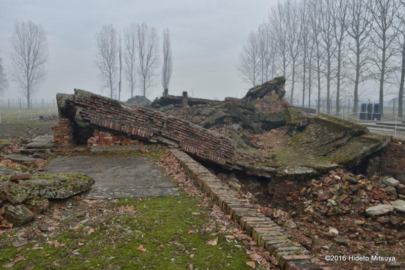 ビルケナウ第二強制収容所クレマトリウム(ガス室)の廃墟4