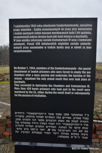 ビルケナウ第二強制収容所クレマトリウム4脇の展示
