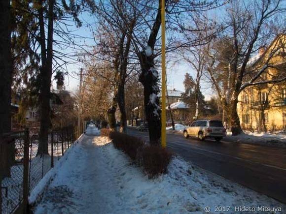 凍った歩道