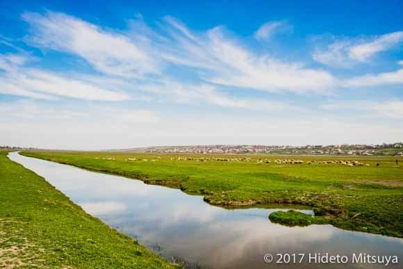 ベシュアルマ郊外の牧草地帯