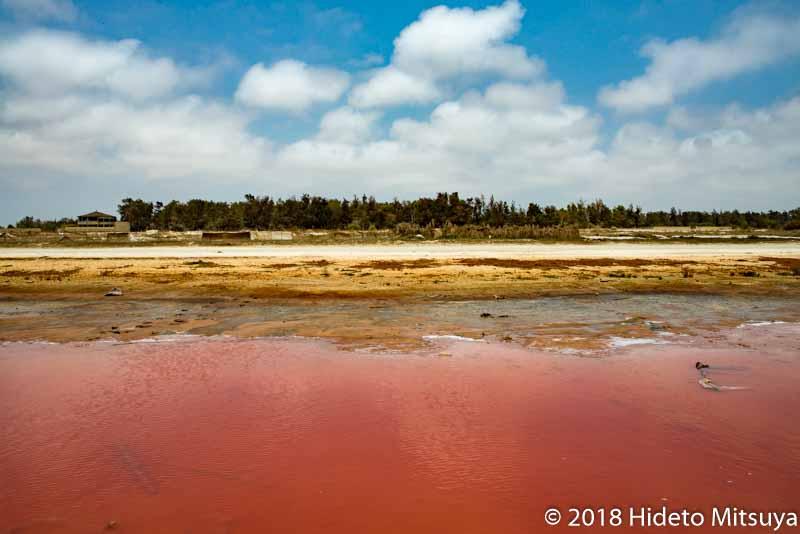 セネガルのピンクの湖ラックローズの端の方