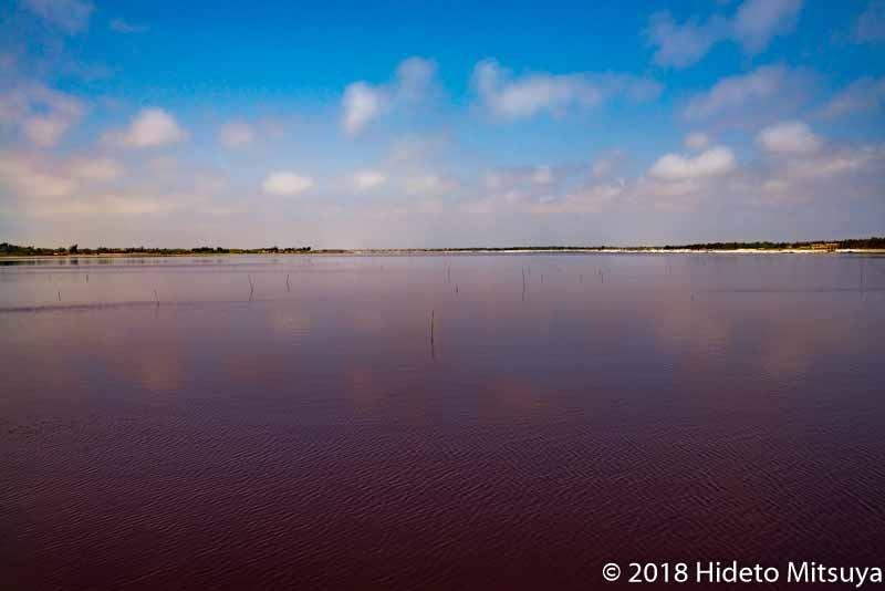 セネガルのピンクの湖ラックローズ
