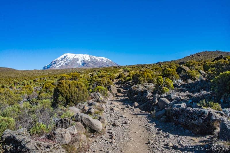 キリマンジャロ山頂を望む