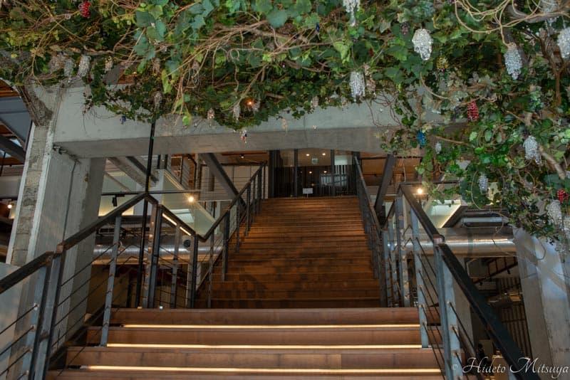 ジョージアワイン展試飲会場は二階
