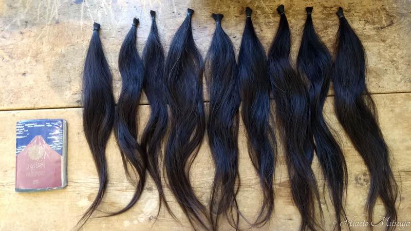 ヘアドネーションでカットされた髪の束2