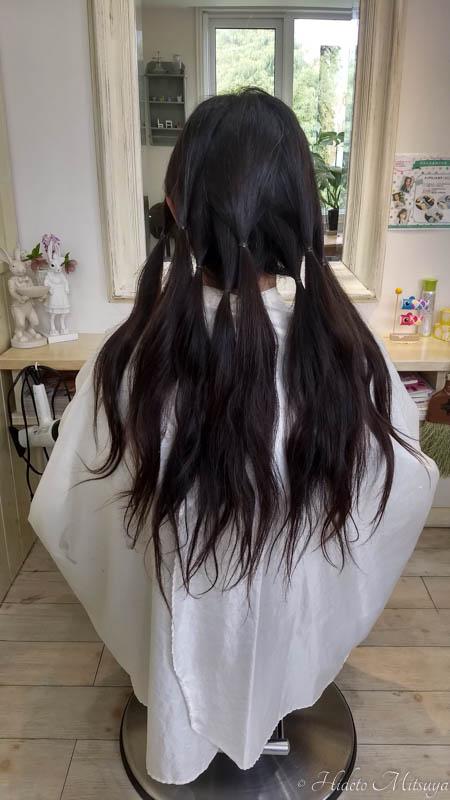 ヘアドネーションのために束ねられた髪
